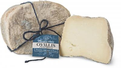 Ovillis Ambrosia - Pecorino matured in caves, Valsana, Cibo, Cheese, Supplier, Importer, Wholesaler, Italian, formaggio