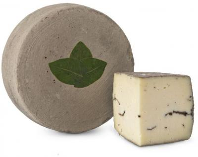 Sottocenere cheese with truffle cibo valsana cheese suppliers